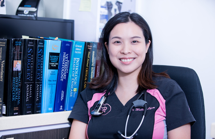 Dr Wallis Chan